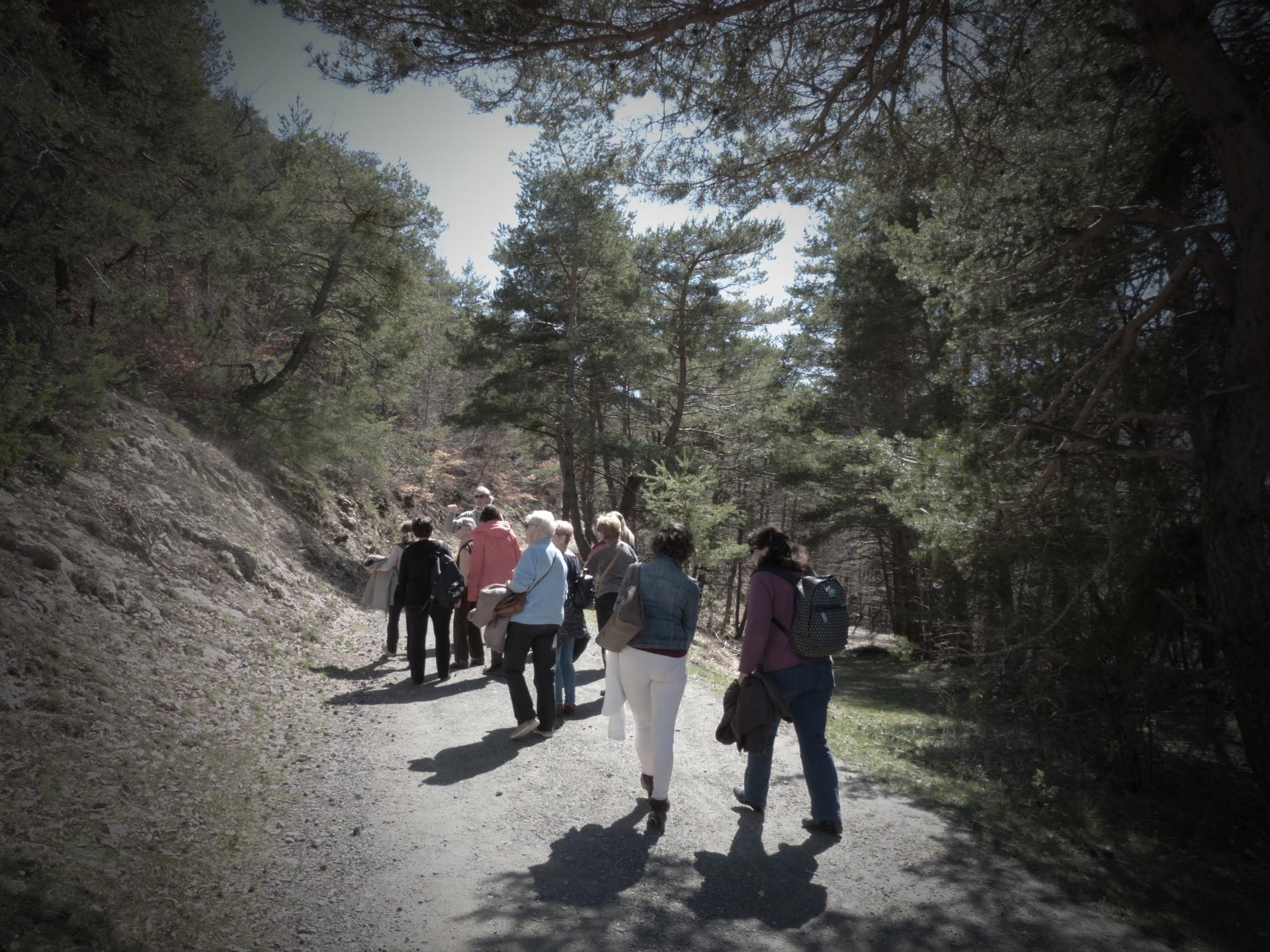 Marche vers Pindreau